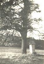 Kříž za hřištěm v roce 1959